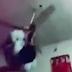Ισλαμική παράνοια VIDEO