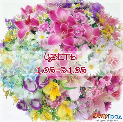 "Доска ""Цветы"" до 31/05"
