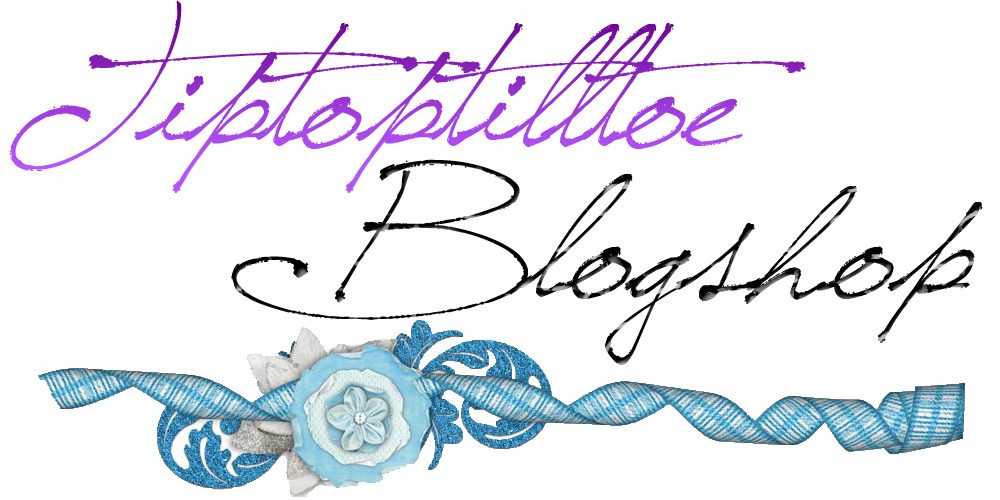 Tiptoptilltoe @ Blogshop