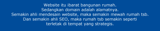 website dan domain