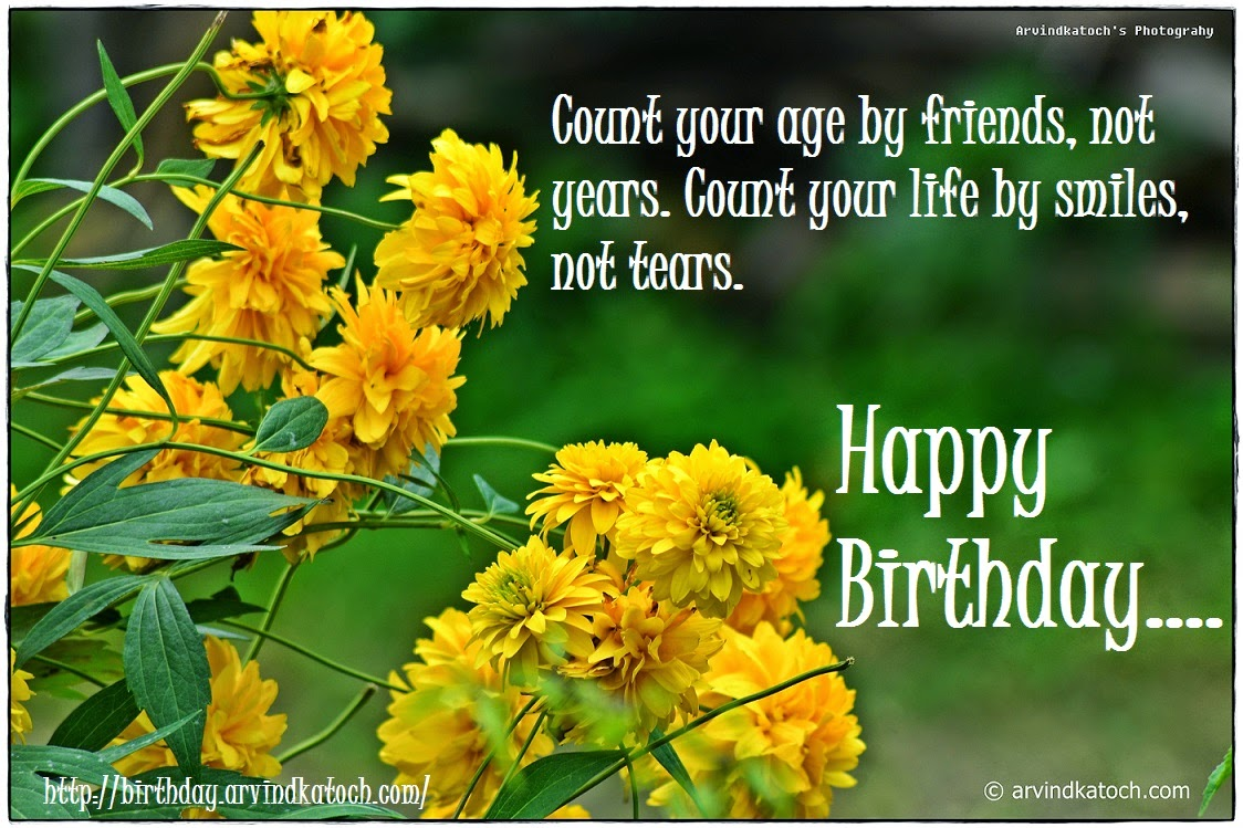 Count your age by friends happy birthday card on smile true count your age by friends happy birthday card on smile kristyandbryce Image collections