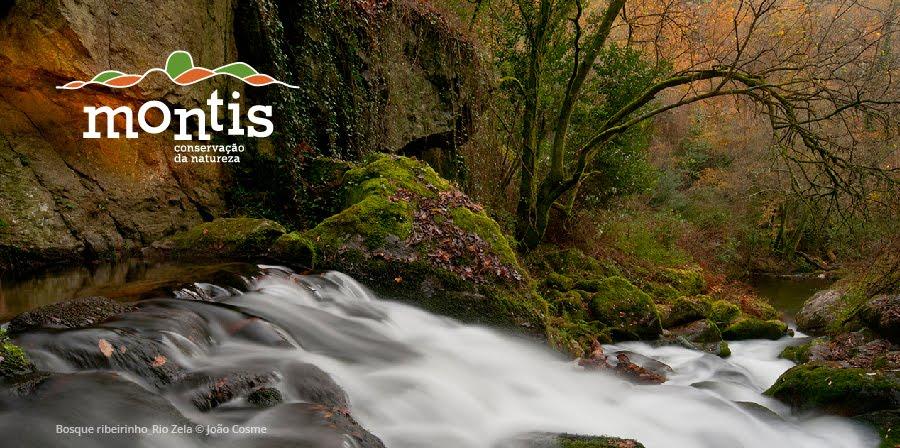 Montis - Associação de Conservação da Natureza