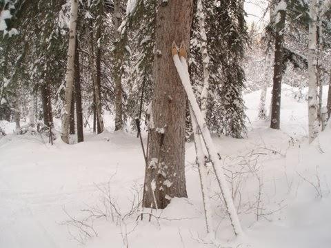 Snowy Skis