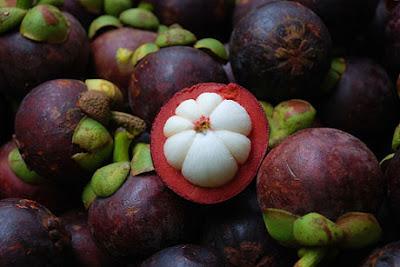 Manfaat Buah Manggis dan Kulitnya