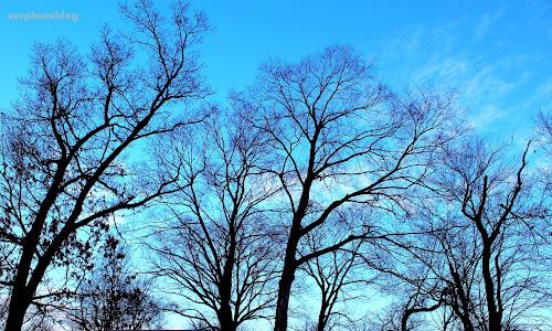 Wallpaper musim dingin terindah