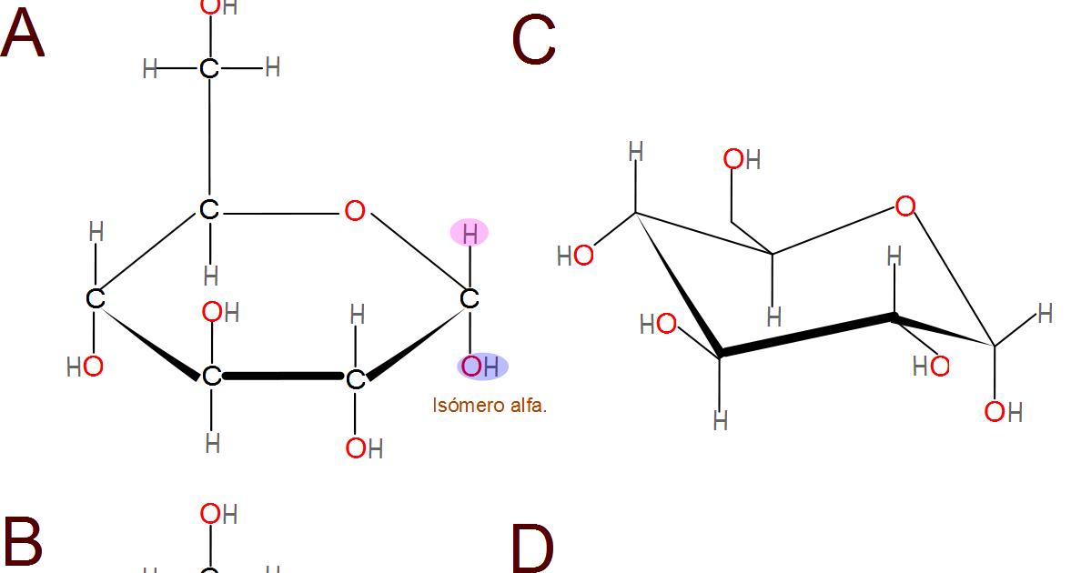 Ciencias de joseleg is meros alfa y beta de la d glucosa for Como se escribe beta