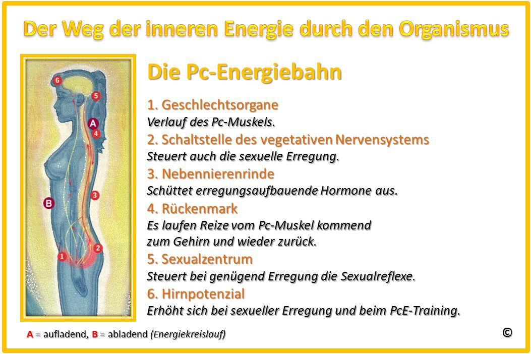 Eggetsberger-Info, Blogger, Blog: Was kann der