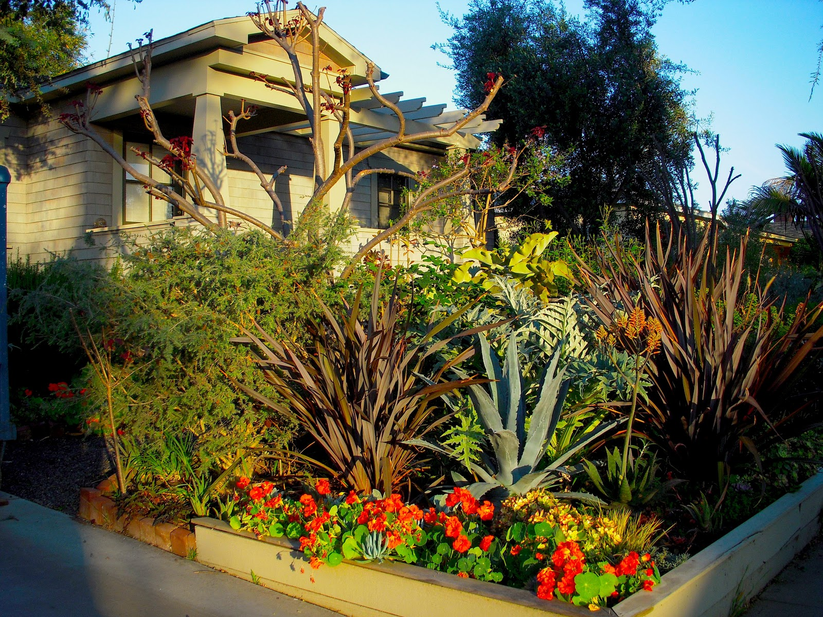 mar vista green garden showcase 3771 ashwood avenue