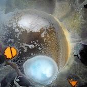 Artiste peintre actuel, cosmos imaginaire