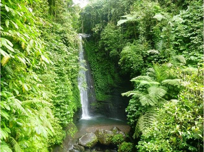 tetebatu, gunung rinjani, keindahan alam, desa wisata di lombok, air terjun alami