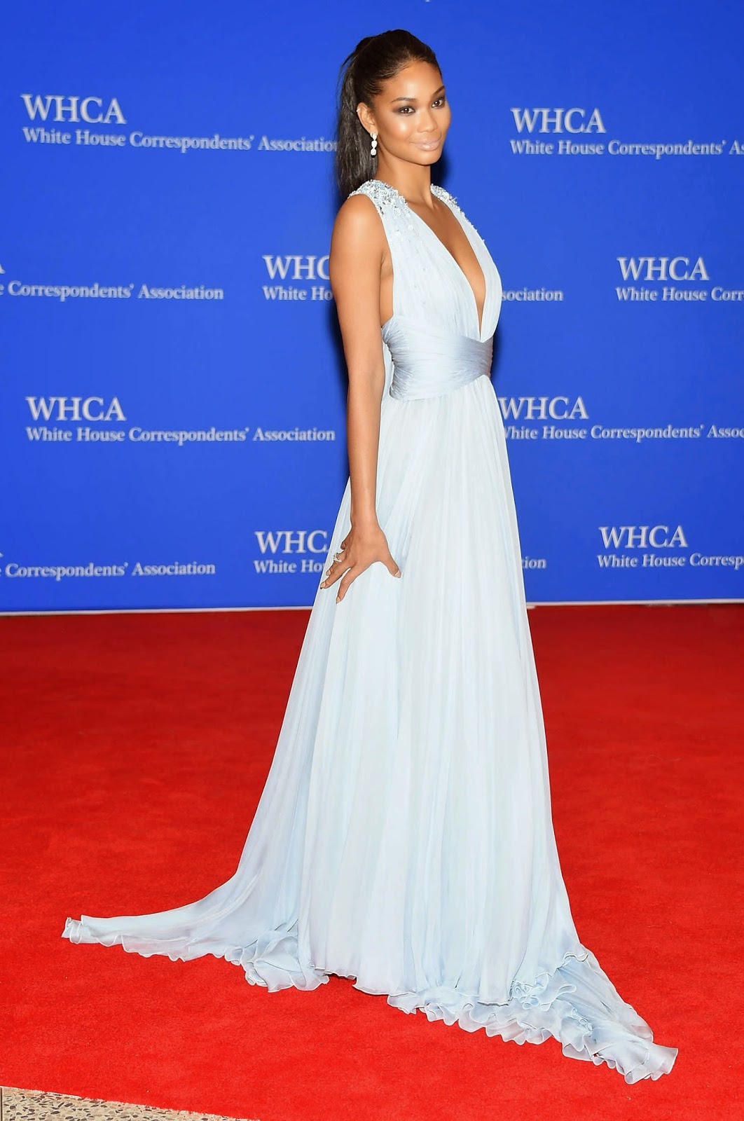 Chanel Iman smoulders in a low cut gown at the 2015 White House Correspondents'  Association Dinner
