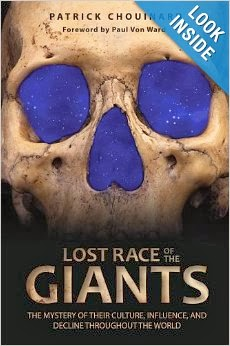 Original and intriguing Giants book