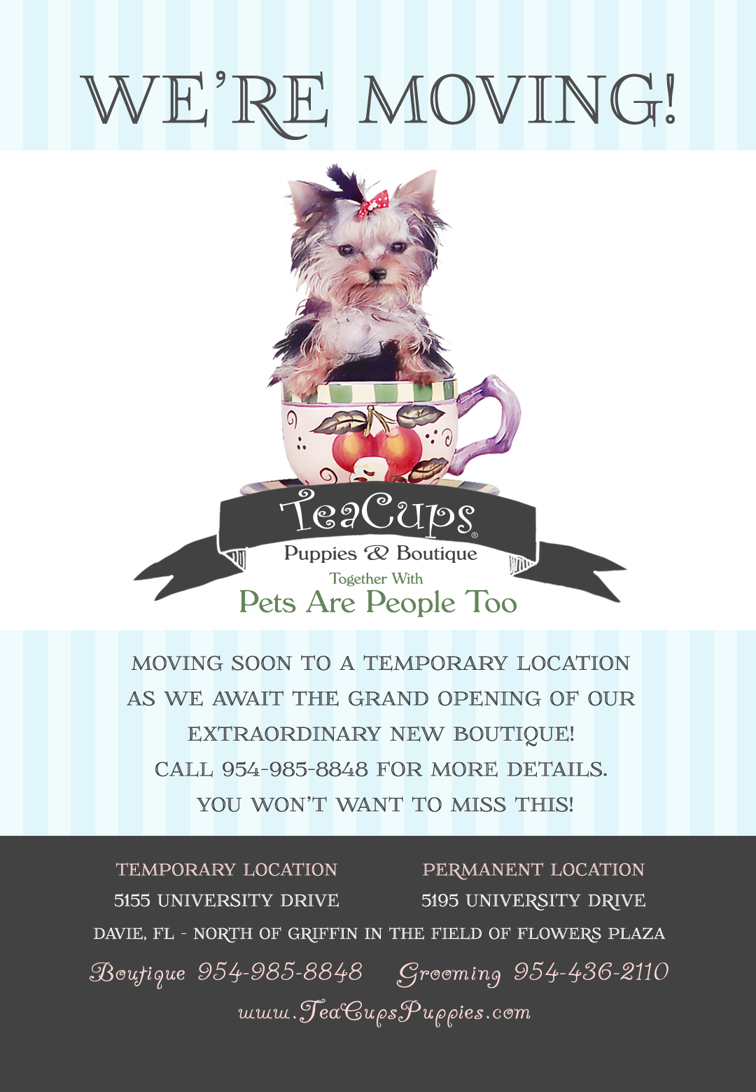 We\'re Moving! Announcing the New Location of TeaCups, Puppies ...