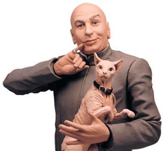 el gato y el ser humano