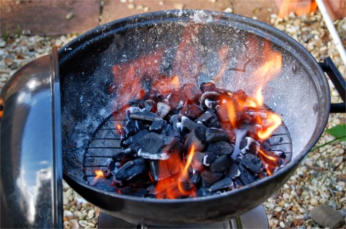 Barbacoa en el jardín con carbón vegetal