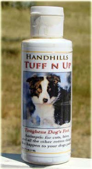 Summer is almost here! Have you ordered your Tuff N Up to save your dog's pads?