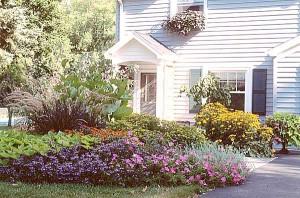 D corez votre maison avec le jardinage de fleur d cor de for Xd garden design