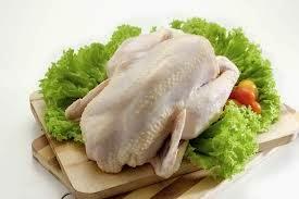 Ayam Organik Az Zain