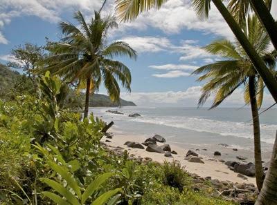 palm beach madagascar animal planet