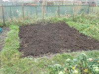 Allotment Growing - November Jobs - Spreading Compost