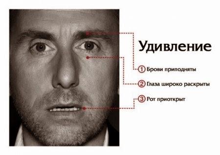 Мимика лица человека - удивление и страх, Пол Экман Теория лжи