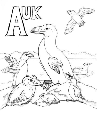 The Daily Art Of LemurKat Avian Alphabet Colouring Book