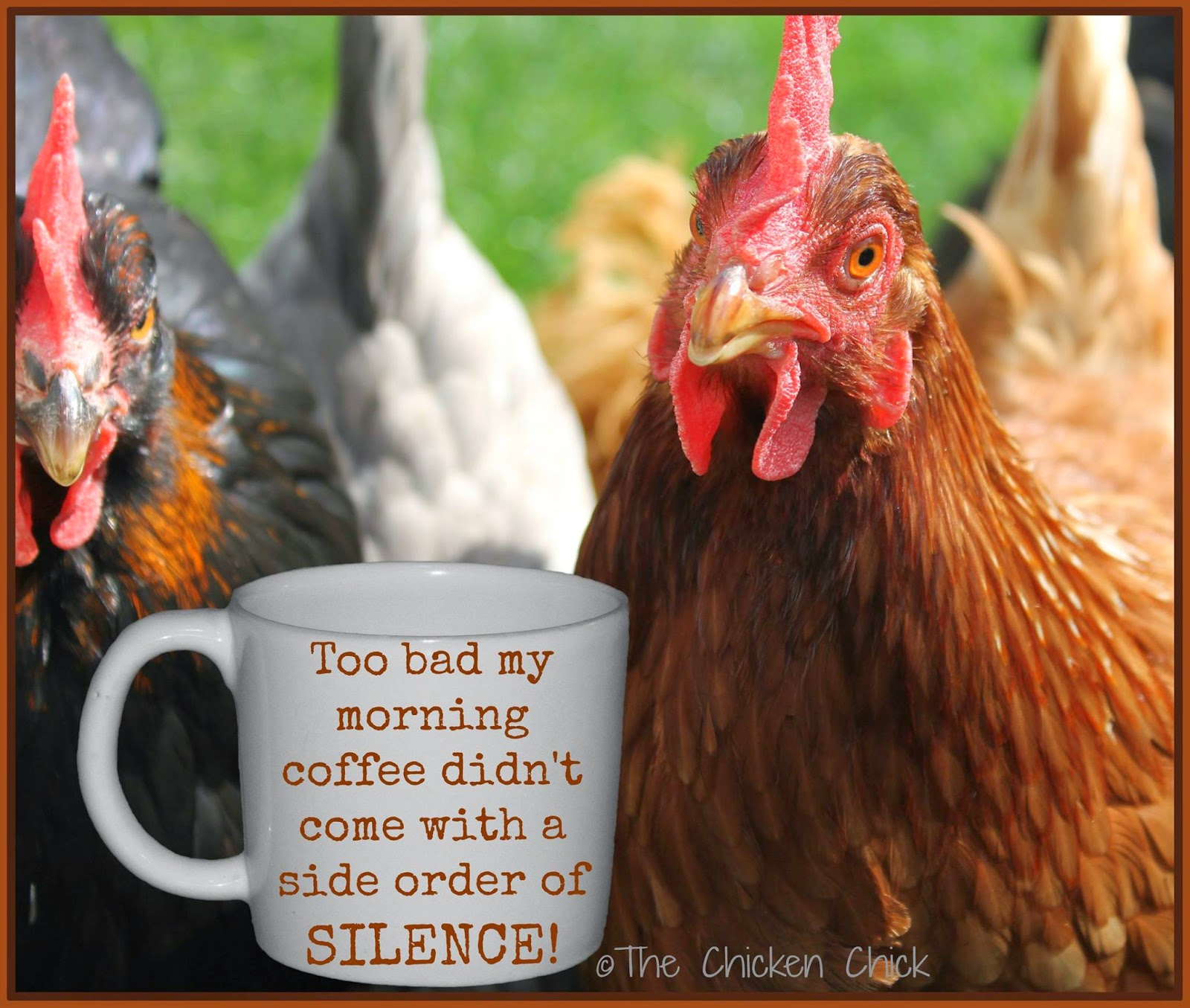 Too bad my morning coffee ddn't come with a side order of SILENCE!