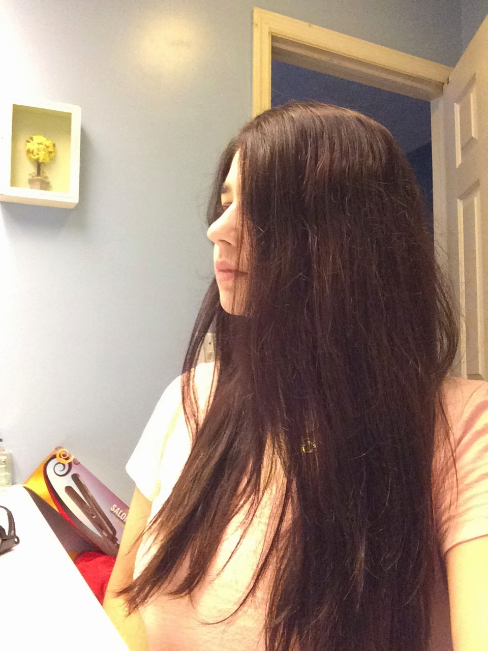 Whatrinaloves Gurin Hair Straightener Review