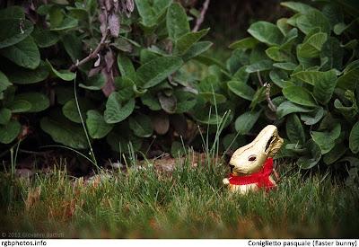 Coniglietto pasquale di cioccolata