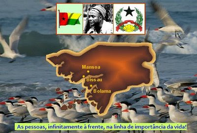PORTUGAL ENGOLE O PRIMEIRO SAPO GUINEENSE