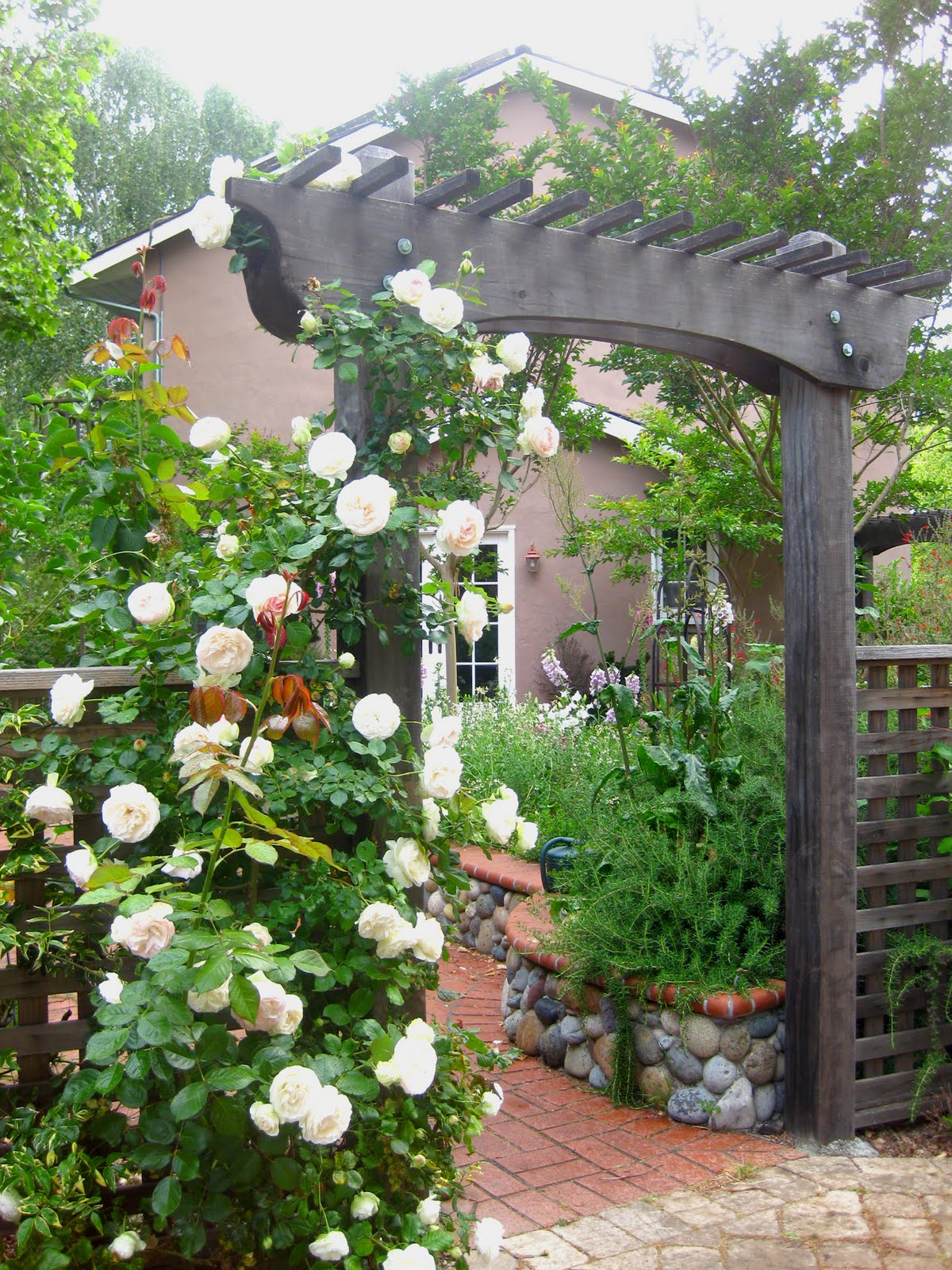 My Romantic Home White Eden Roses