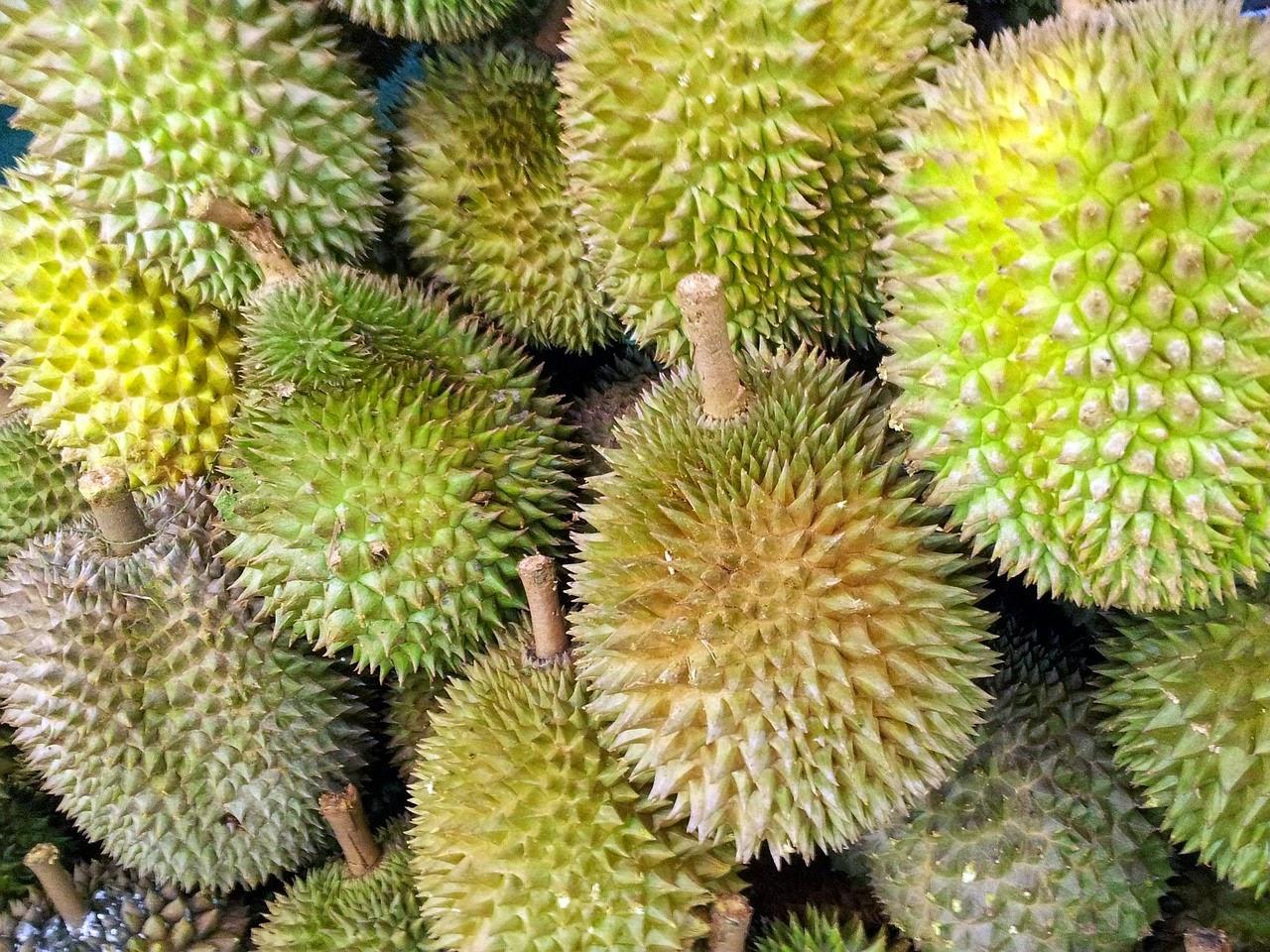 Bahaya Terlalu Banyak Konsumsi Buah Durian