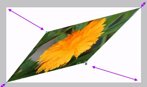 Pixlr -  Como usar ferramenta Distorção Livre