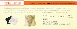 Info & Harga Twin Tulip Lingerie 2014 : Waist Nipper - Romance Chezreine