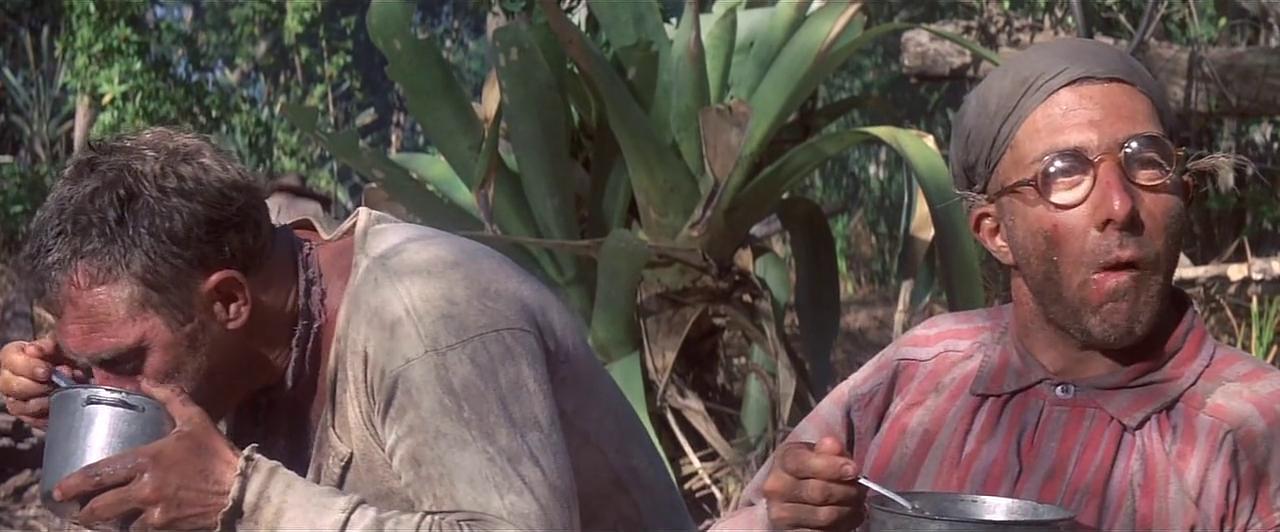 Dustin Hoffman Papillon