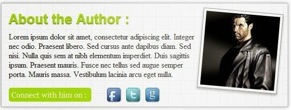 Προσθήκη author box κάτω από τα  posts στον blogger
