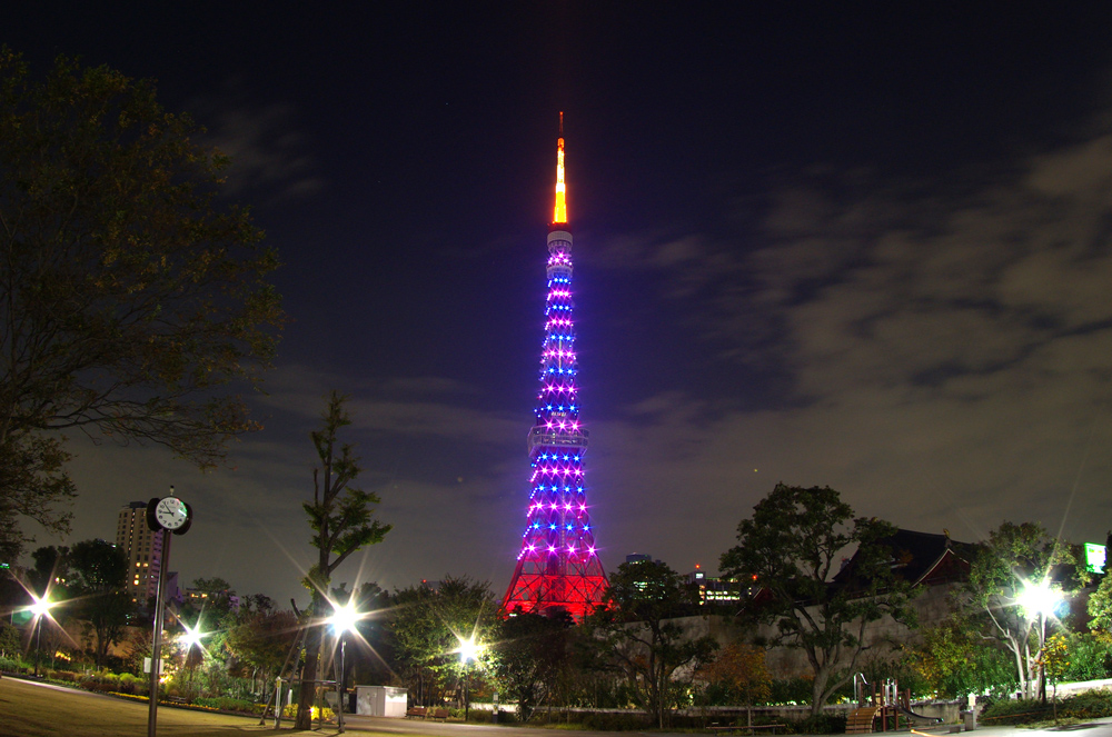 Purple Ribbon on many Towers Japan for campaign of Elimination of All Forms of Violence against Women