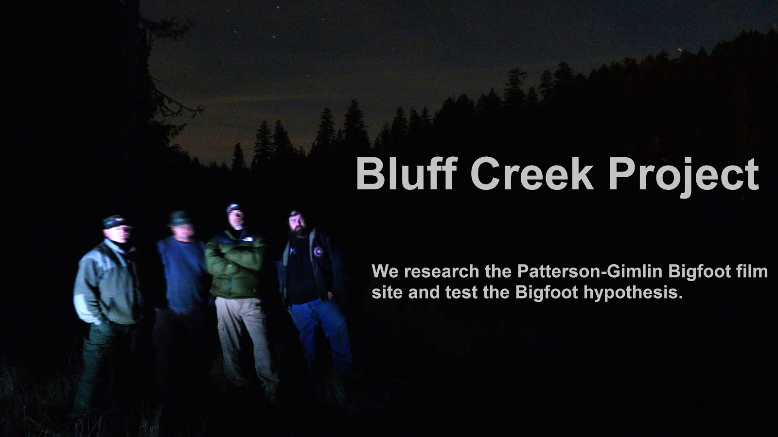 Bluff Creek Project