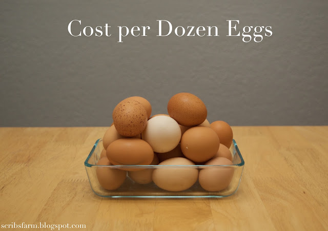 Cost of Raising chickens