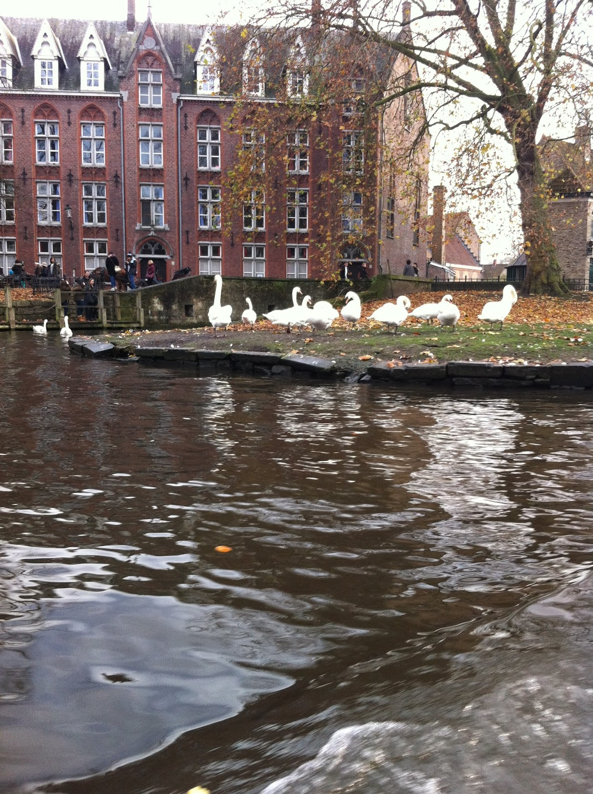 Bruges Canal Trip