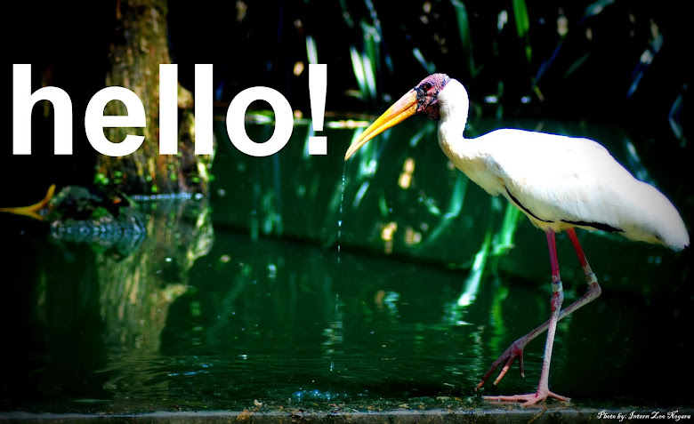 BIRDS OF MALAYSIA™ | ★ |