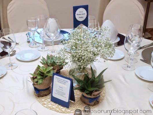 Mimosorum centros de mesa con plantas naturales - Plantas ikea naturales ...