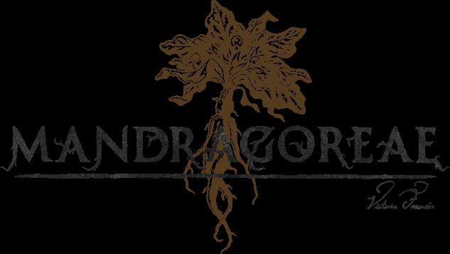 MANDRAGOREAE