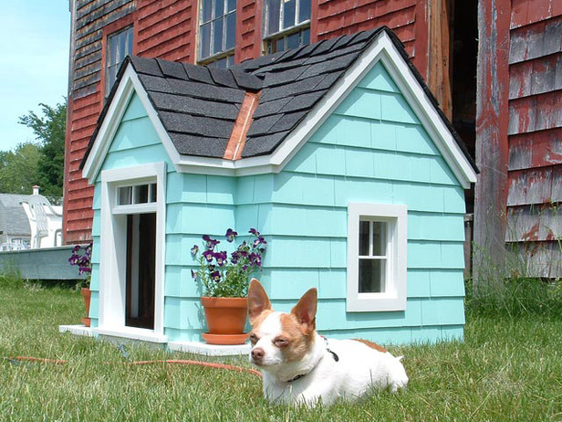 Get A Good Kennel Plan Before Starting To Create The Dog House Or Kennel.  Even If You Intend To Make A Small Kennel, Make Sure That You Have A Plan  To Help ...