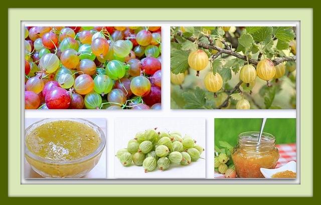 gooseberry for health - ayurclub