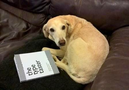 Dog lying besidce Sarah Hyndman's book