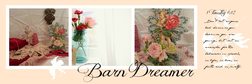 Barn Dreamer