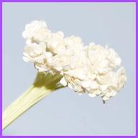 buchet de flori,nunta,2012