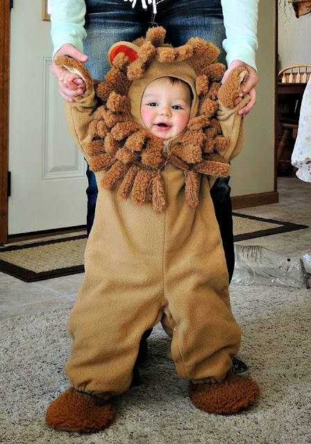 My grandson in his lion costume for Halloween