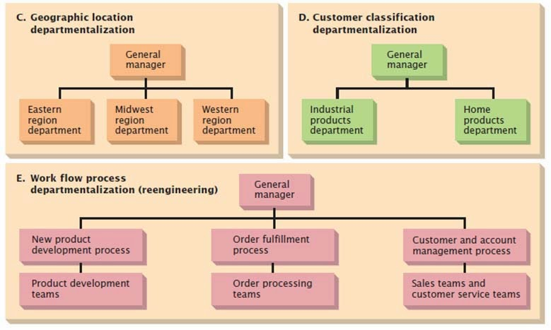 different types of departmentalization within an And coordinated within an organization work specialization, departmentalization, chain of command, span of can be used in all types of organizations.